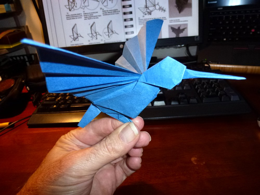 191AldoMarcellHummingbirdScale