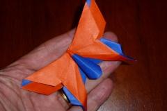 117MichaelLaFosseAlexandersSwallowtailScale