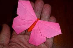 118MichaelLaFosseOrigamidoButterflyScale