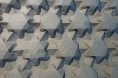 69StarTessellation