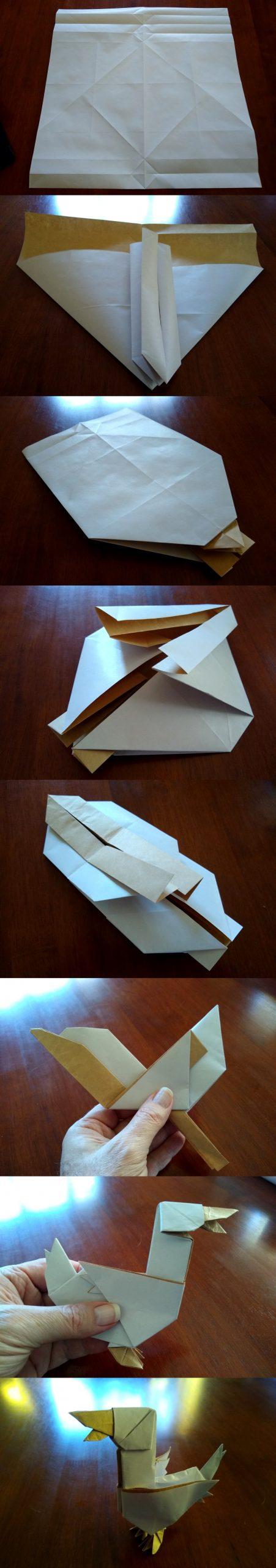 folding the duck