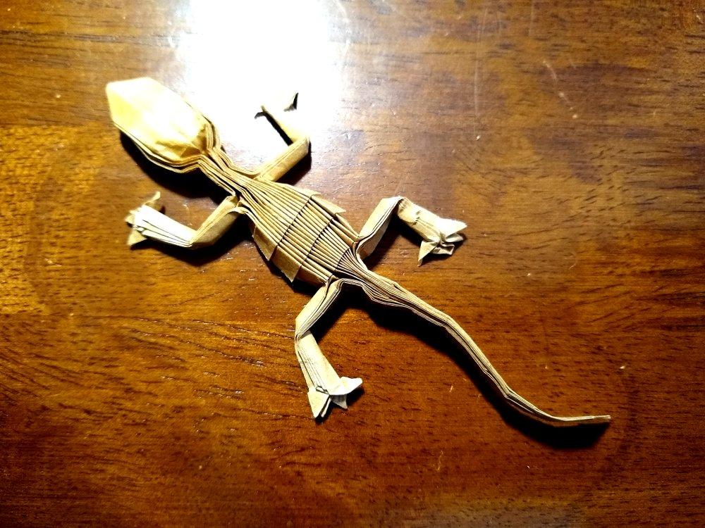 Riccardo Foschi's Gecko