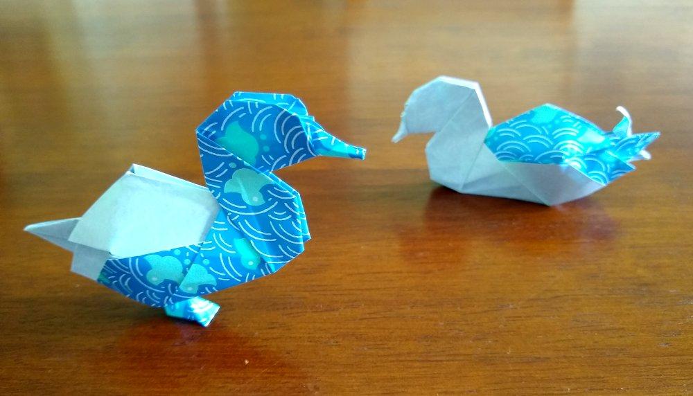 Shiri Daniel's Ducks