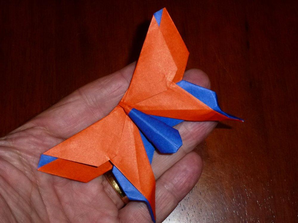 origamiswallowtailbutterfly Instagram posts - Gramho.com   750x1000