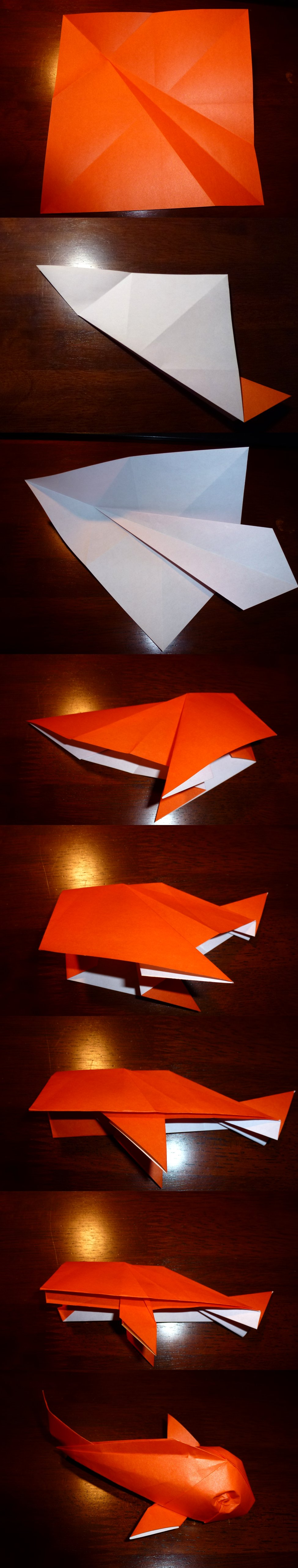 752 202 365 Riccardo Foschis Koi Setting The Crease Origami Diagram I Found These Diagrams On Pinterest Seems They Are Test Oops Sorry But Love Shape And Model Structure