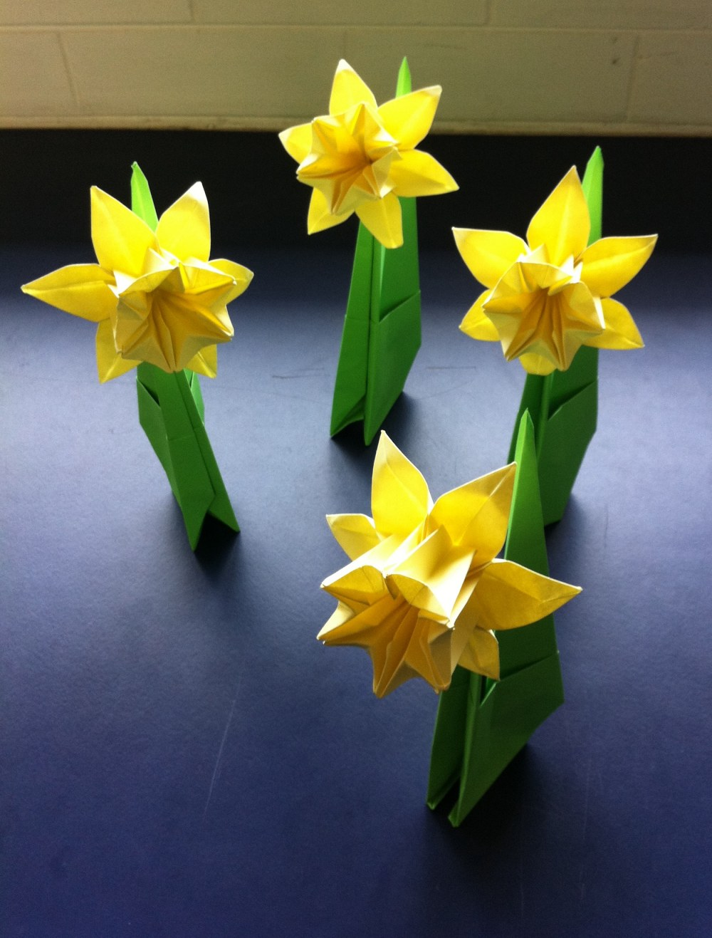 238 Daffodil Day Setting The Crease