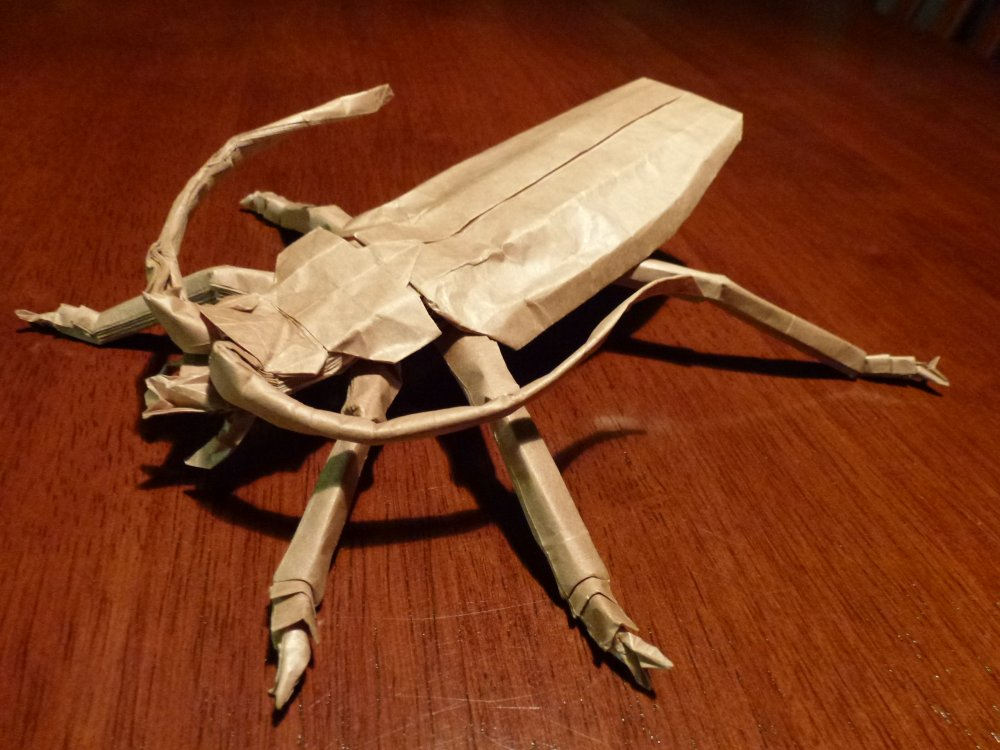 499 Katos Titan Beetle