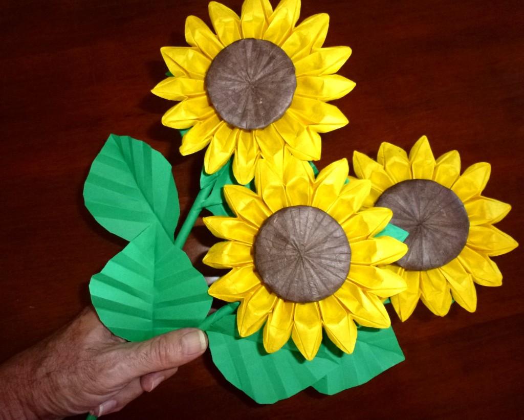 526SunflowersScale