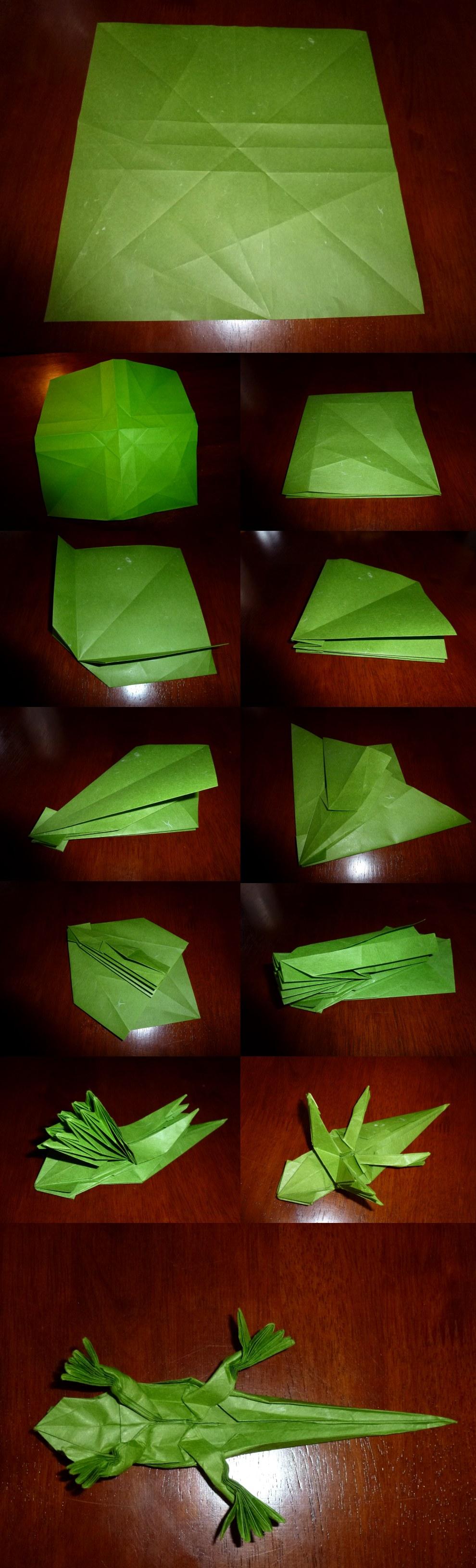 Origami+lizard: Bilder, Stockfotos und Vektorgrafiken | Shutterstock | 3258x990