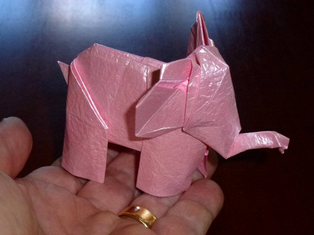 pink elephant scale