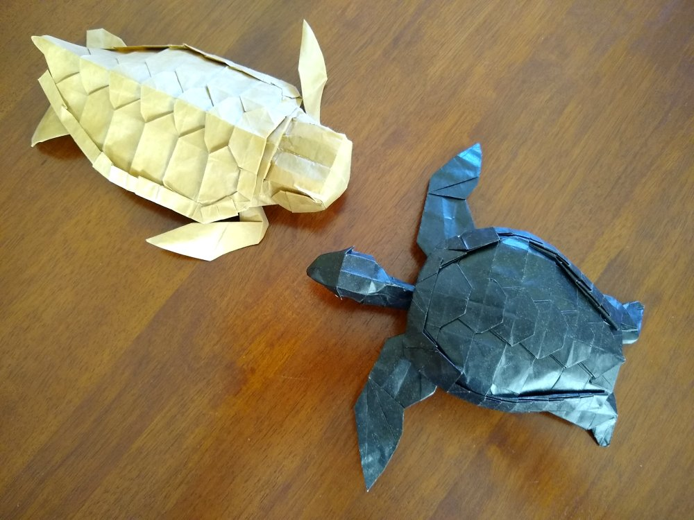 Step By Step Instructions How To Make Origami A Turtle Royalty ... | 750x1000