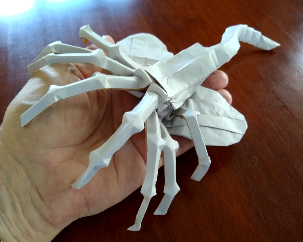 Donny_Origami's facehugger scale