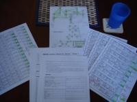 maroon Area Planning