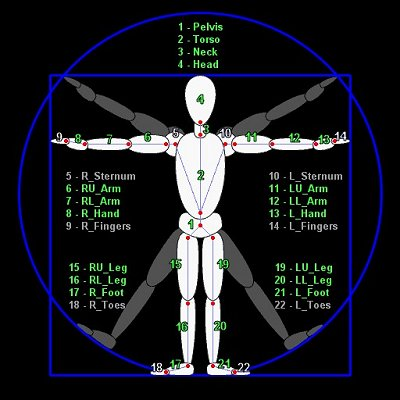Avatar body locations